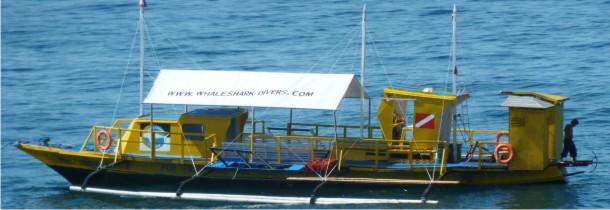 Ausbildung - whaleshark divers